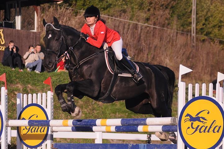 Zawody jeździeckie Dwór Maria Antonina