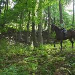 dwor-maria-antonina-weekend-w-siodle (1)
