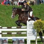 Skok przez przeszkody na koniu