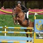 Skok przez przeszkodą na koniu