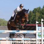 Skok przez przeszkodę na koniu