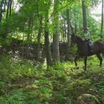 dwor-maria-antonina-weekend-w-siodle-1